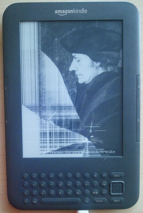 The newly fractured landscape of my kindle screen.